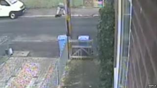 A man punching a dog in Jex Road, Norwich