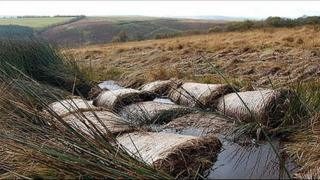 Straw bale dam in Exmoor