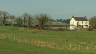 Strangford farm