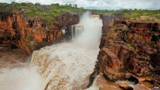 The Mitchell Plateau area is home to rich flora and fauna and several water falls
