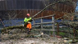 A worker clears a fallen tree which blocked a footbridge in Cardiff