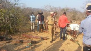 Members of the media film the bodies of loggers killed by an anti-smuggling task force in a remote forest in the southern state of Andhra Pradesh on April 7, 2015.