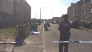 Police in Wardieburn after two brothers were stabbed