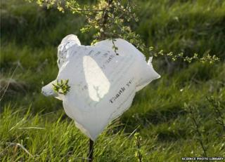 Plastic bag littering countryside - file pic