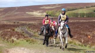 Golden Horseshoe in Exmoor