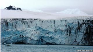 The calving front of a glacier on Livingstone Island located near the Antarctic Peninsula (photo Alba Martin-Español)