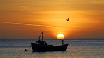 قارب لصيد الاسماك