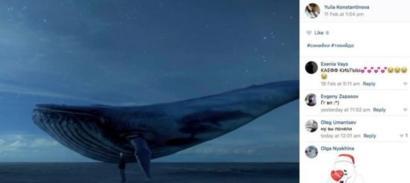 Instagram Blue Whale