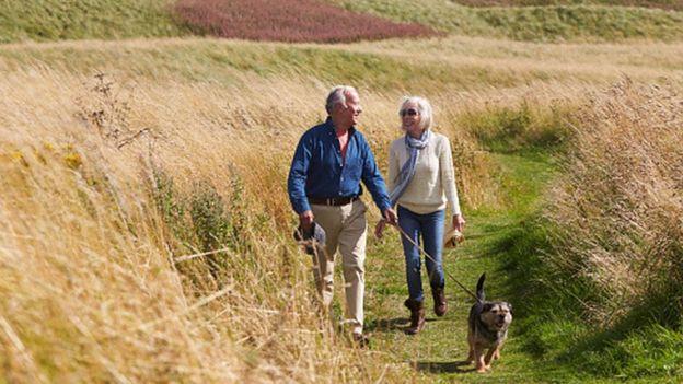 Older couple walking their dog