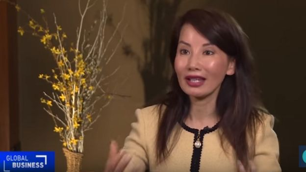 Jane Sun spoke to official broadcaster CGTN about the centre in April 2017