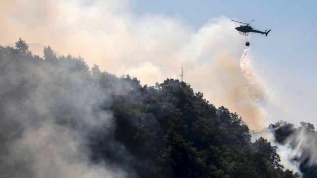 Albaniya paytaxtı Tirana yaxınlığında meşə yanğınları tüğyan edir