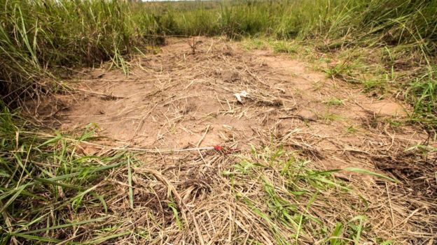 Dug up mound of earth marks one of the 40 mass graves the UN has found in Kasai since fighting began. This is in the town of Tshimbulu.