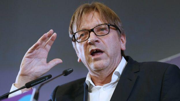 Eski Belçika Başbakanı Guy Verhofstadt, 2014 pic