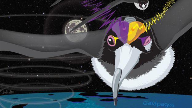 Ilustração de fragata voando à noite