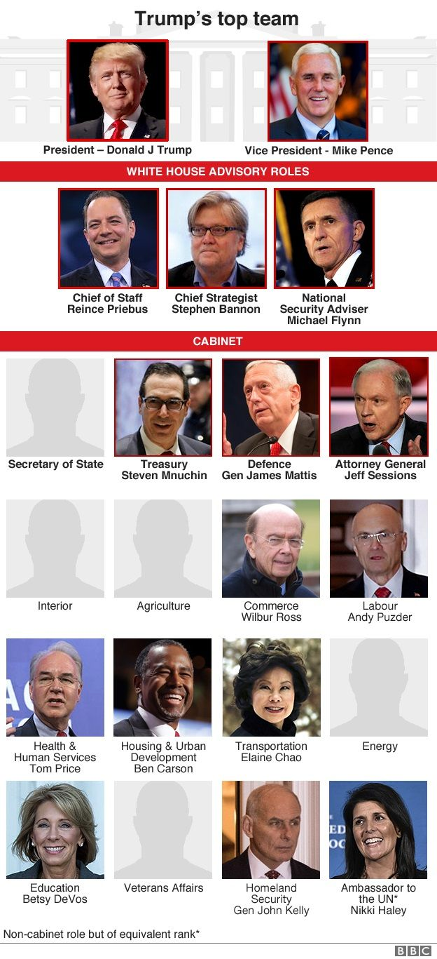 Trump picks Andrew Puzder to lead US Department of Labor - BBC News