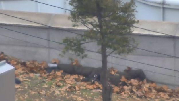 سرباز فراری پای دیوار روی انبوهی برگ افتاده بود