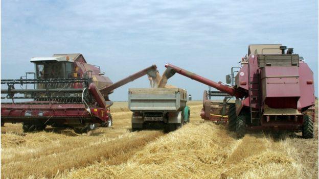 Введение рынка земли оказалось не по силам уже нескольким украинским правительствам