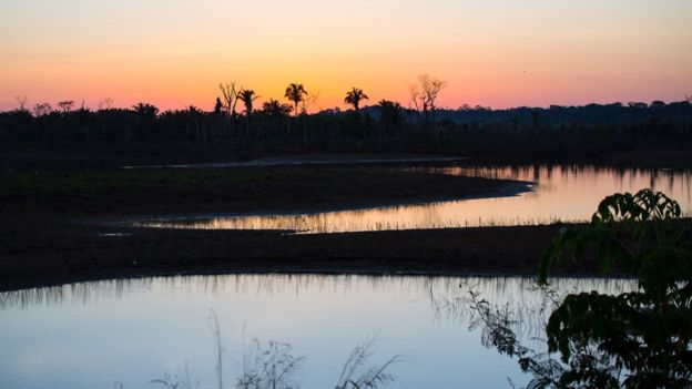 Por do sol na Amazônia em Rondônia