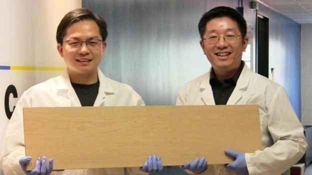Professors Liangbing Hu and Teng Li showing a table of the superwood (Photo: courtesy University of Maryland)