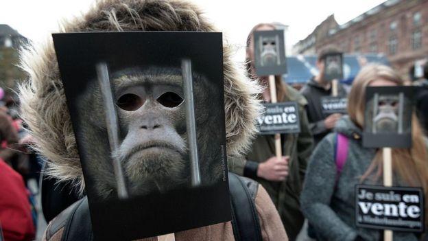 Protesta de activistas en defensa de los derechos de los animales con máscaras.
