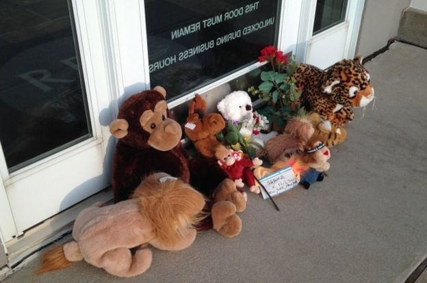 A picture shows stuffed animals left by protesters in the doorway of River Bluff Dental clinic, workplace of Walter James Palmer, in July 2015