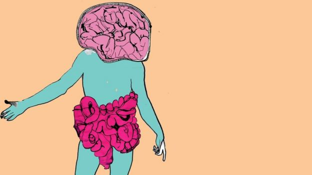 Illustration about the bowel-brain connection