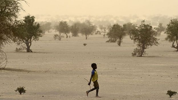 A child walks in a desert area in Mali.