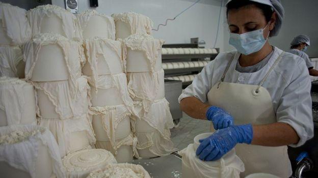 fabrica de queso en España