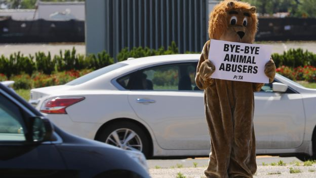 A member of the People for the Ethical Treatment of Animals protests in Uniondale, New York. Photo: 21 May 2017