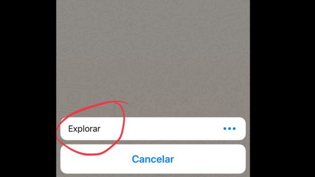 Explorar en Whatsapp