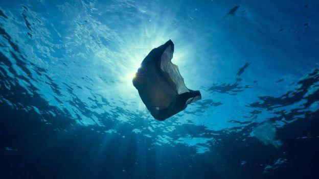 海洋中的塑料垃圾