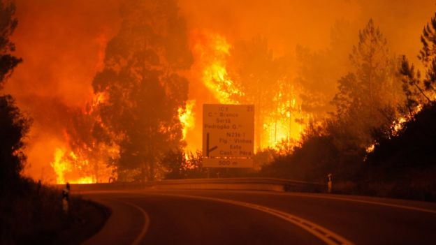 Flames raging around a road in Pedrógão Grande