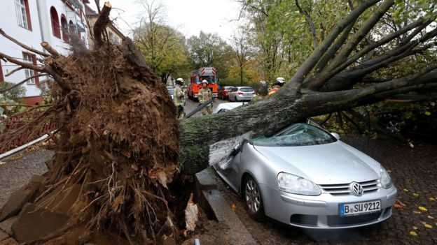 Firefighters are pictured next to a car damaged by a tree during stormy weather caused by a storm called