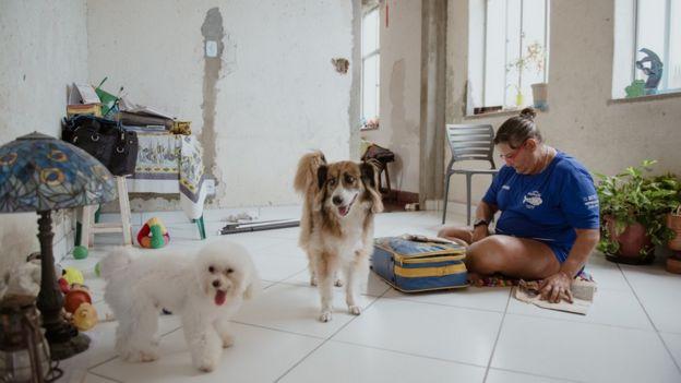 Peixinho ao lado de seus cachorros em casa