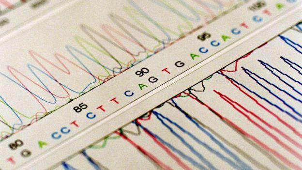 DNA分析