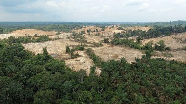 إندونيسا