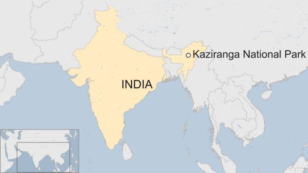 Kaziranga in India
