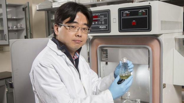 Seokheun Choi, profesor asistente de Ciencias Eléctricas y Computarizadas de Binghamton
