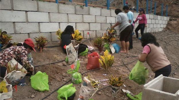 Vecinas plantando un jardín en el parque central