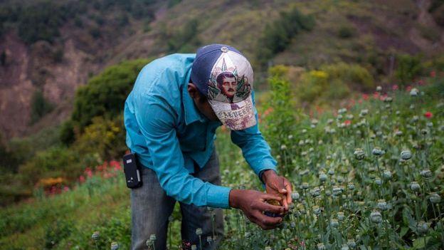 Un campesino en México.