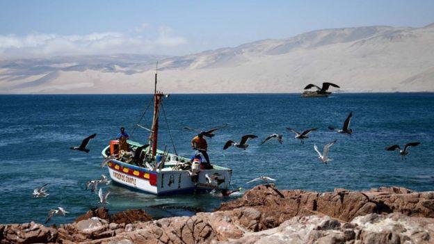 Pescadores en una balsa en Pisco