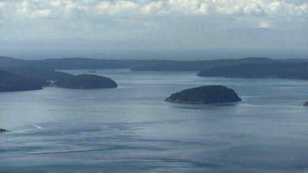 Orcas Adası