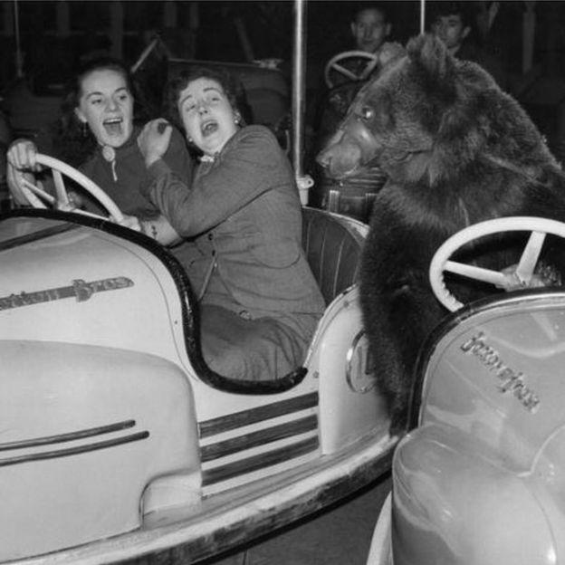 Mujeres asustadas al ver un oso (crédito: Getty Images)