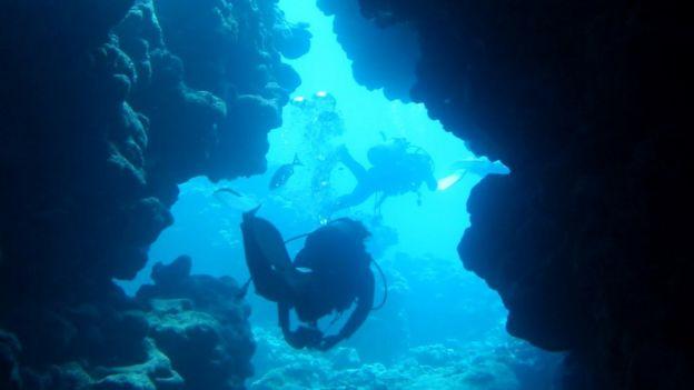 Mergulhadores debaixo d'água