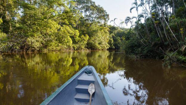 Vista del río desde un bote