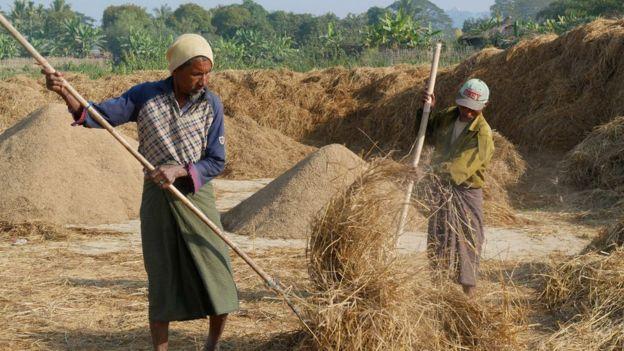 Rohingyas in Mrauk U