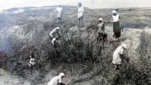 Русские женщины работают на очистке оросительного канала от зарослей камыша. Тяжелая и изнурительная работа, недоедание, жара были постоянными спутниками переселенцев в Таджикистане. Многие из них в те годы заболели тропической малярией, что стало причиной смерти многих переселенцев. Вахшская долина 1937 год