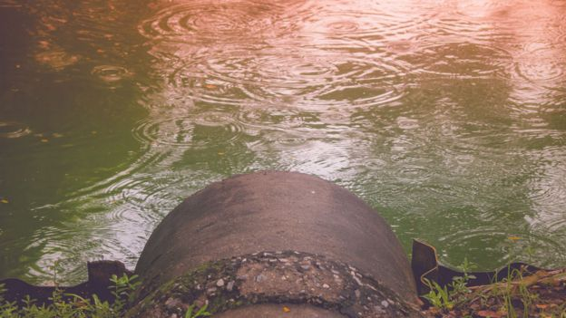 Sewage pipe near water