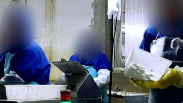 Investigação da BBC mostra como funciona a exploração de trabalhadores em países como Rússia, Polônia e China. Fotografia: Reprodução/BBC Brasil