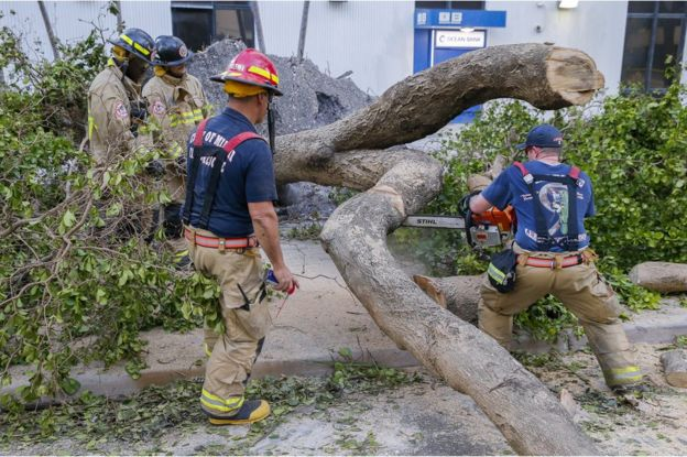 Firefighters with Miami Fire Rescue saw up one of the scores of fallen trees off Brickell Avenue after Hurricane Irma struck in Miami, Florida, 11 September